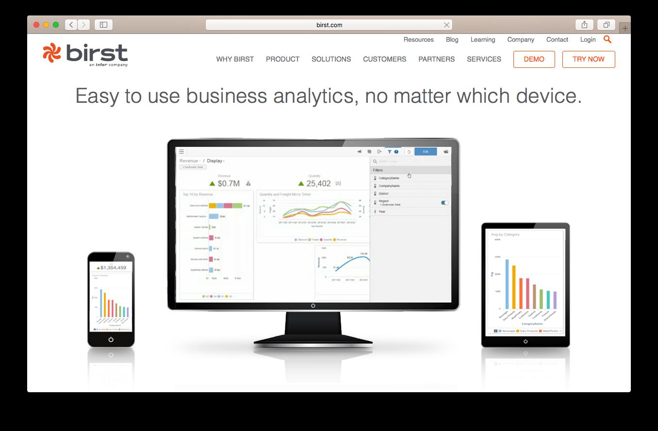 Birst homepage screenshot business analytics device