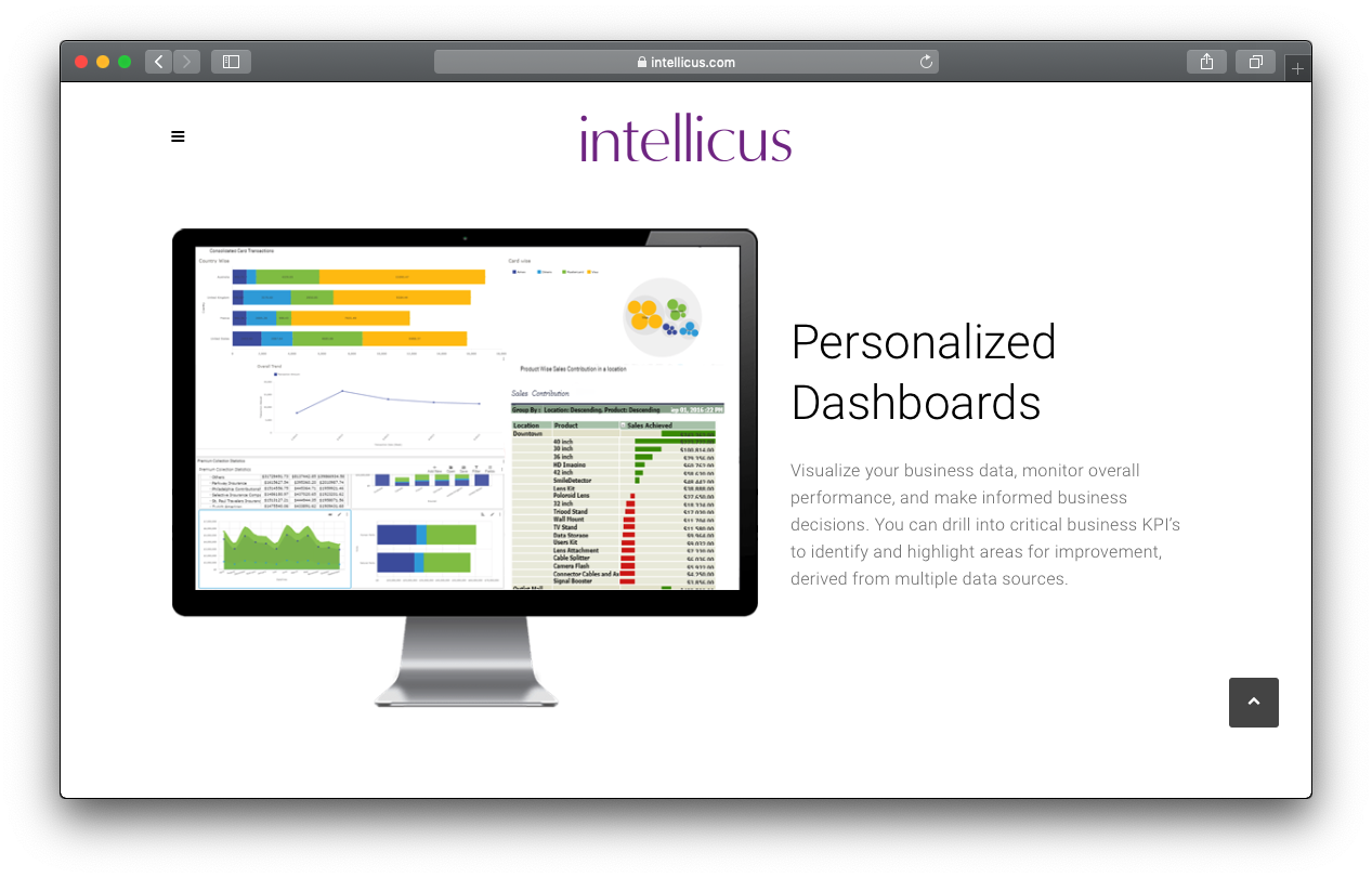 Intellicus Reviews, Pricing and Alternatives