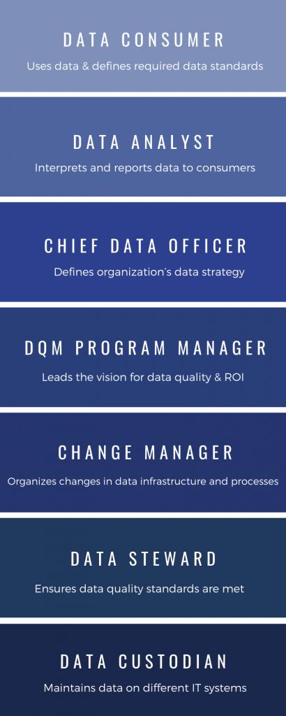 dqm organization structure